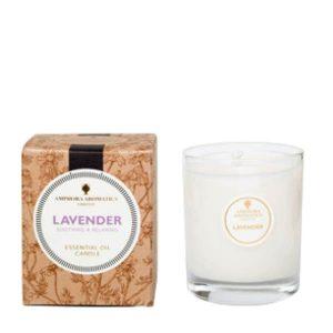 Amphora Aromatics Lavender 40 hr Pot Candle